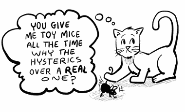 I shouldn't have, but I was surprised to see a cat flinging a real mouse around like they do the toy ones.