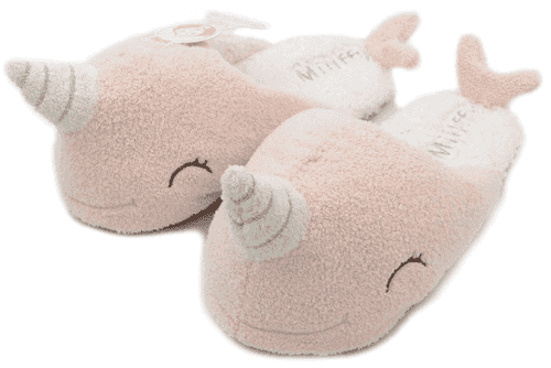 20200226slippers
